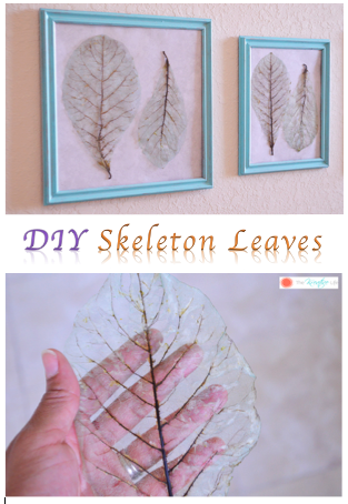 DIY Skelton Leaves Turorial