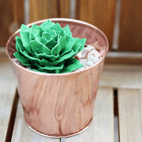 Egg Carton Succulent by Bliss Bloom Blog