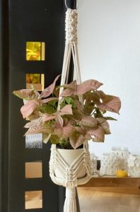 Macrame Plant Hanger DIY Pattern by WhiteOwlKnot