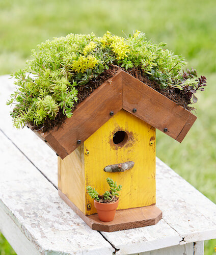 DIY Living-Rood Birdhouse by Midwest Living
