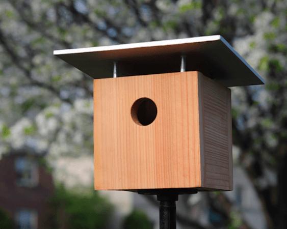 DIY Modern Birdhouse by Curbly
