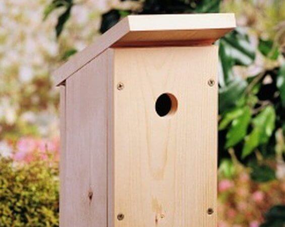 Build A One-Board DIY Birdhouse by Birds And Blooms