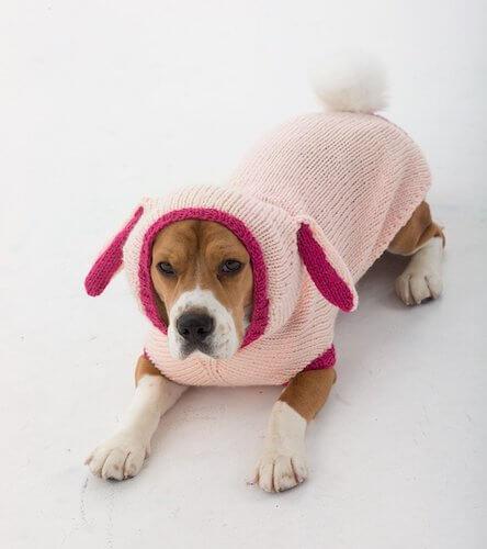 Bunny Dog Sweater Knitting Pattern by Lion Brand
