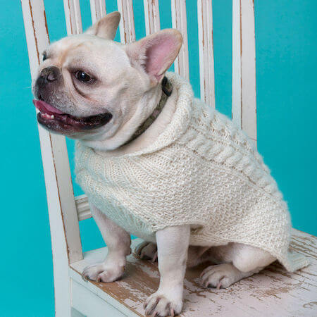 Cabled Dog Sweater Knitting Pattern by Red Heart