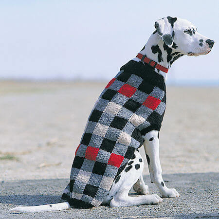 Canine Checks Knitted Dog Sweater Pattern by Yarnspirations