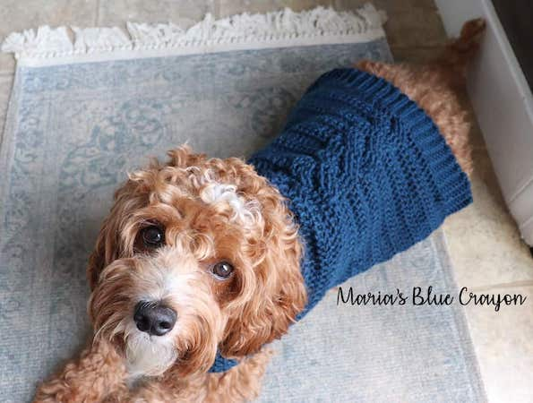 Dog Cable Sweater Crochet Pattern by Maria's Blue Crayon