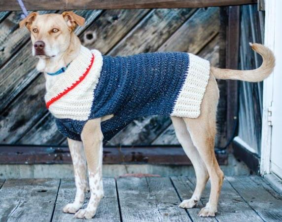 Easy Dog Sweater Crochet Pattern by Make And Do Crew