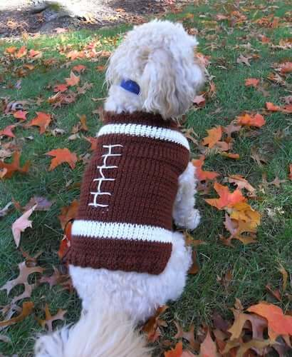 Football Dog Sweater Knitting Pattern by Inspired By Mocha