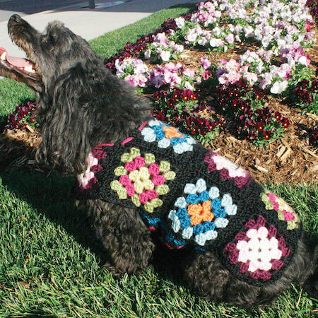 Granny Square Crochet Dog Sweater Pattern by Red Heart