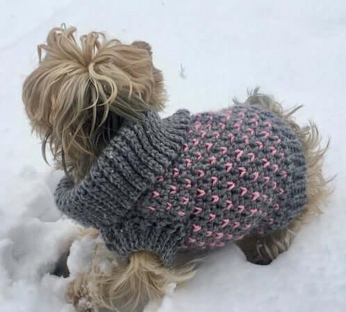 Hearts & Love Dog Sweater Crochet Pattern by AYW Crochet Designs