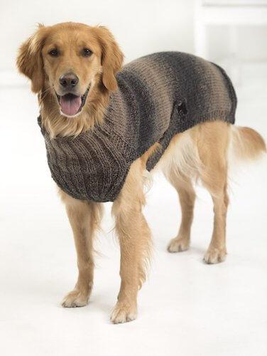 Hunter's Urban Dog Sweater Knit Pattern by Lion Brand