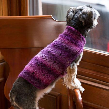 Paw Print Dog Sweater Knitting Pattern by Yarnspirations