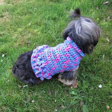 Small Dog Sweater With Ruffles Crochet Pattern by Itch For Some Stitch