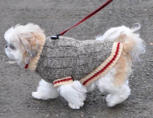 Sock Monkey Dog Sweater Knitting Pattern by Ronnie Eldridge Design