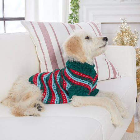 Stylish Knit Dog Sweater Pattern by Red Heart