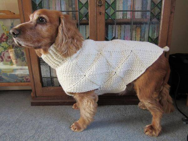 Tunisian Crochet Dog Sweater Pattern by By Gill Bux