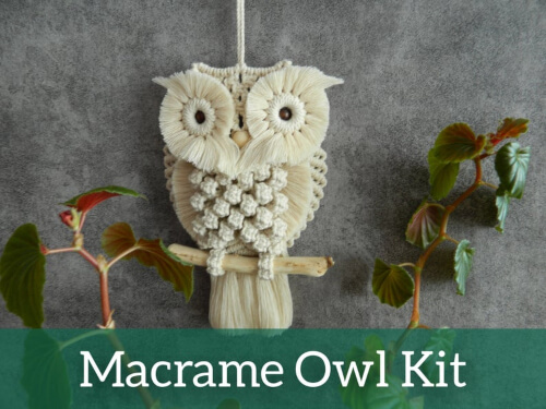 Owl Wall Hanging Macrame Kit from DIYmacrameStore
