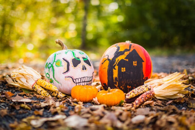 paint for pumpkins