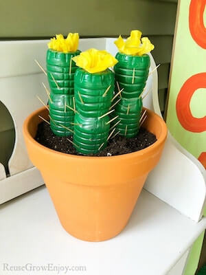 Water Bottle Cactus Craft by Reuse Grow Enjoy